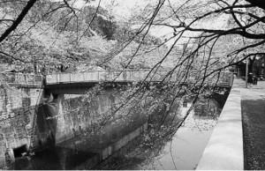 現在の大滝水門